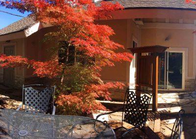 ZOOMinity-backyard-table